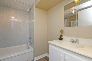 Photo 26: 6600 Miller's Grove in Mississauga: Meadowvale House (2-Storey) for sale : MLS®# W3009696