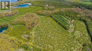 Photo 9: LT 22, 23 & 24 4 & 5 Concession in Chatsworth (Twp): Agriculture for sale : MLS®# 40111860