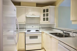 """Photo 7: 205 20145 55A Avenue in Langley: Langley City Condo for sale in """"Blackberry Lane 3"""" : MLS®# R2619315"""