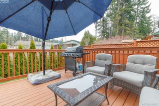 Photo 29: 23 Newstead Cres in VICTORIA: VR Hospital House for sale (View Royal)  : MLS®# 814303
