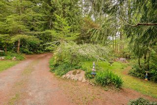 Photo 20: 385 IVOR Rd in Saanich: SW Prospect Lake House for sale (Saanich West)  : MLS®# 833827