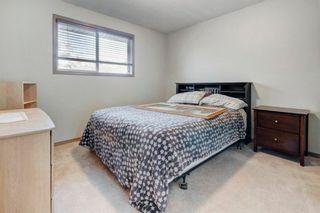 Photo 21: 36 567 Edmonton Trail NE: Airdrie Row/Townhouse for sale : MLS®# A1149021