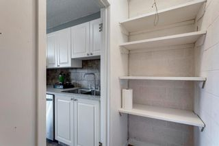 Photo 16: 211 7007 4A Street SW in Calgary: Kingsland Apartment for sale : MLS®# A1086391