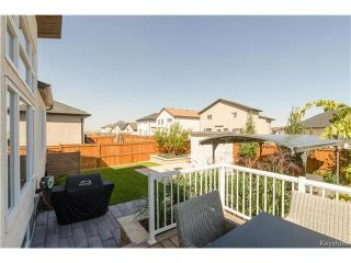 Photo 16: 75 Northern Lights Drive in Winnipeg: South Pointe Residential for sale (1R)  : MLS®# 1702374