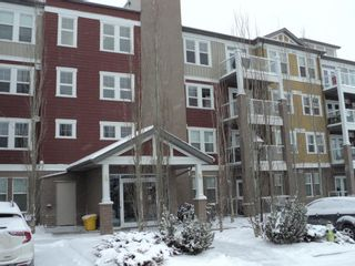 Photo 14: 205 2300 Evanston Square NW in Calgary: Evanston Apartment for sale : MLS®# A1069385