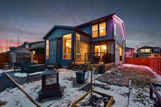 Photo 38: 34 Walden Park SE in Calgary: Walden Residential for sale : MLS®# A1056259