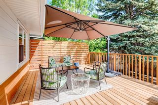 Photo 28: 5404 Thornton Road NW in Calgary: Thorncliffe Detached for sale : MLS®# A1120570
