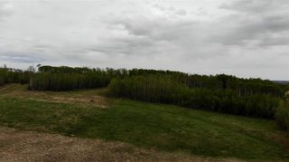 Photo 3: Viewmar Drive: Rural Ponoka County Land for sale : MLS®# C4288523