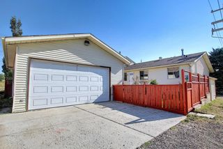 Photo 45: 19 TEMPLEBY Road NE in Calgary: Temple Residential for sale : MLS®# A1027919