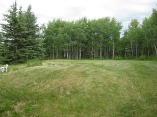 Photo 5: 12 KMS NORTH ON COCHRANE in COCHRANE: Rural Rocky View MD Rural Land for sale : MLS®# C3526638