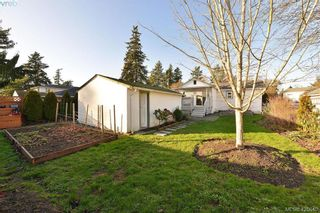 Photo 15: 569 Hurst Ave in VICTORIA: SW Glanford House for sale (Saanich West)  : MLS®# 832507