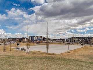 Photo 37: 1611 4641 128 Avenue NE in Calgary: Skyview Ranch Apartment for sale : MLS®# A1029088