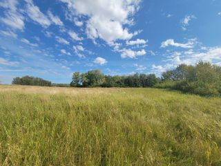 Photo 2: HWY 29 RR 175: Rural Lamont County Rural Land/Vacant Lot for sale : MLS®# E4260440