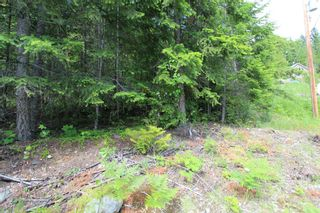 Photo 5: Lot 367 Fairview Road in Anglemont: North Shuswap, Anglemont Land Only for sale (Shuswap)  : MLS®# 10133376
