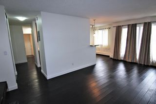 Photo 9: 303 4455A Greenview Drive NE in Calgary: Greenview Apartment for sale : MLS®# A1049950