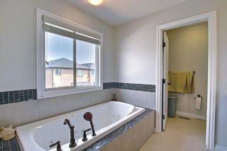 Photo 21: 113 Saddlelake Green NE in Calgary: Saddle Ridge Detached for sale : MLS®# A1127536