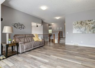Photo 20: 176 Hawkmere Way: Chestermere Detached for sale : MLS®# A1129210