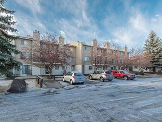 Photo 17: 16 2519 38 Street NE in Calgary: Rundle House for sale : MLS®# C4149864