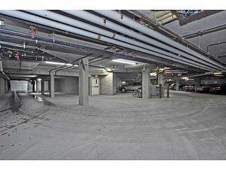 Photo 21: 147 15 EVERSTONE Drive SW in CALGARY: Evergreen Condo for sale (Calgary)  : MLS®# C3596971