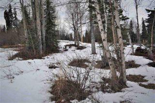 Photo 7: LOT 25 MILL BAY Road: Granisle Land for sale (Burns Lake (Zone 55))  : MLS®# R2558138