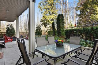 Photo 13: C110 20211 66 AVENUE in Langley: Willoughby Heights Condo for sale : MLS®# R2245197