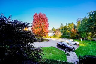 """Photo 28: 211 12268 224 Street in Maple Ridge: East Central Condo for sale in """"Stonegate"""" : MLS®# R2625241"""