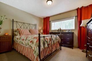 Photo 25: 20801 MCFARLANE Avenue in Maple Ridge: Southwest Maple Ridge House for sale : MLS®# R2065058