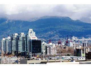 """Photo 9: 401 2515 ONTARIO Street in Vancouver: Mount Pleasant VW Condo for sale in """"ELEMENTS"""" (Vancouver West)  : MLS®# V881721"""