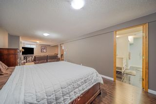 Photo 30: 3319 28 Street SE in Calgary: Dover Semi Detached for sale : MLS®# A1153645