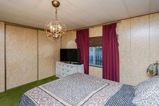 Photo 28: 5011 45 Avenue: Calmar House for sale : MLS®# E4265874