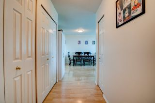 """Photo 7: 501 4160 ALBERT Street in Burnaby: Vancouver Heights Condo for sale in """"Carleton Terrace"""" (Burnaby North)  : MLS®# R2562019"""