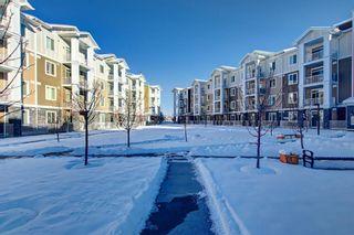 Photo 26: 1406 522 CRANFORD Drive SE in Calgary: Cranston Apartment for sale : MLS®# A1080413