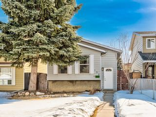 Main Photo: 132 Erin Croft Crescent SE in Calgary: Erin Woods Detached for sale : MLS®# A1070461