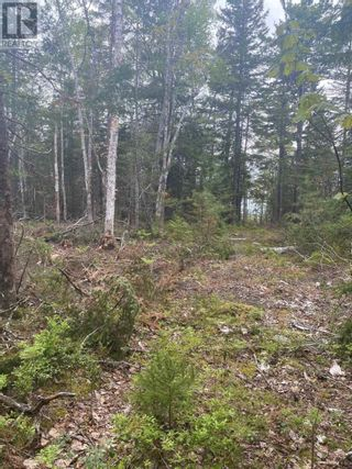 Photo 2: West Caledonia in Whiteburn Mines: Vacant Land for sale : MLS®# 202112919