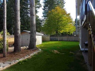 Photo 19: 4452 208A Street in Langley: Brookswood Langley House for sale : MLS®# R2119827
