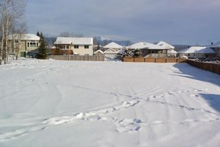 """Photo 20: 4321 REISETER Avenue in Smithers: Smithers - Town House for sale in """"Silver King"""" (Smithers And Area (Zone 54))  : MLS®# R2240093"""