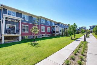 Photo 34: 458 Nolan Hill Drive NW in Calgary: Nolan Hill Row/Townhouse for sale : MLS®# A1125269