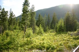 Photo 16: 190 SW Christison Road in Salmon Arm: Gleneden Vacant Land for sale : MLS®# 10118444