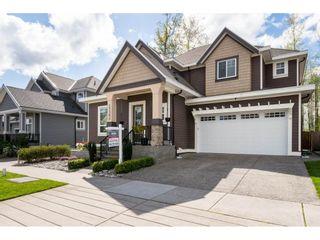 Photo 1: 17362 3 Avenue in Surrey: Pacific Douglas House for sale (South Surrey White Rock)  : MLS®# R2156593