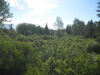 Photo 2: 12 KMS NORTH ON COCHRANE in COCHRANE: Rural Rocky View MD Rural Land for sale : MLS®# C3526638