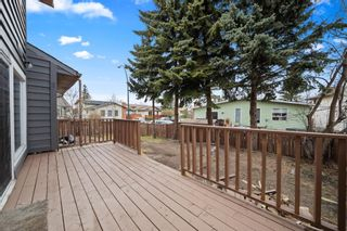 Photo 37: 63 Whiteram Court NE in Calgary: Whitehorn Detached for sale : MLS®# A1107725