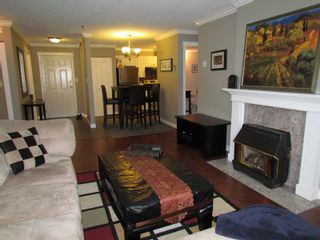 """Photo 7: #206 33688 KING RD in ABBOTSFORD: Poplar Condo for rent in """"COLLEGE PARK PLACE"""" (Abbotsford)"""