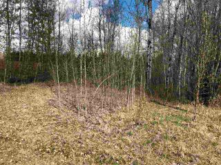 Photo 3: 93-15065 Twp Rd 470: Rural Wetaskiwin County Rural Land/Vacant Lot for sale : MLS®# E4243875