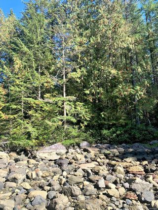Photo 4: Lot 42 Sonora Island in : Isl Small Islands (Campbell River Area) Land for sale (Islands)  : MLS®# 885460