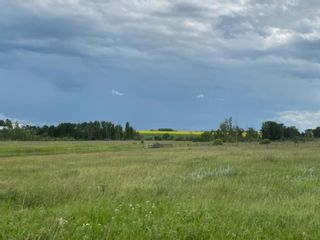 Photo 3: 320232 Range Road 23: Rural Mountain View County Land for sale : MLS®# A1015216