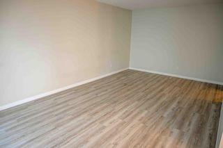 Photo 16: 204 10320 113 Street in Edmonton: Zone 12 Condo for sale : MLS®# E4250245