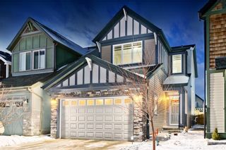 Photo 17: 142 SKYVIEW POINT CR NE in Calgary: Skyview Ranch House for sale : MLS®# C4226415