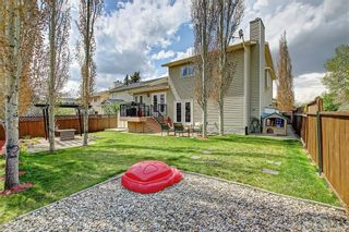 Photo 5: 155 SUN HARBOUR Close SE in Calgary: Sundance Detached for sale : MLS®# C4247547