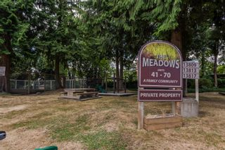 """Photo 30: 49 13809 102 Avenue in Surrey: Whalley Townhouse for sale in """"The Meadows"""" (North Surrey)  : MLS®# F1447952"""