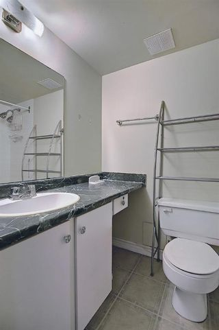 Photo 17: 210 340 14 Avenue SW in Calgary: Beltline Apartment for sale : MLS®# A1104058